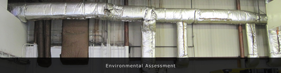 Environmental Assessement